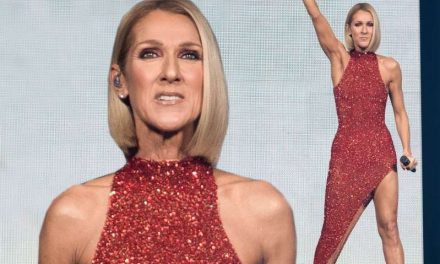 Celine Dion loses legal battle against ICM and agent over commissions